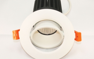 401 series new adjustable downlight