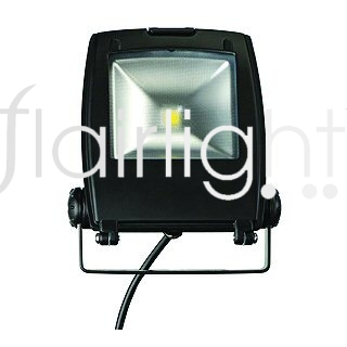Flairlight IP65 10w LED Flood Light