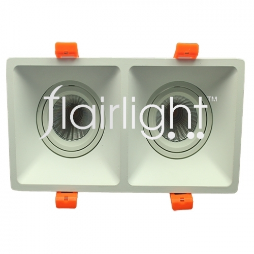 flailing twin LED Downlight